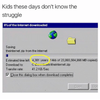 Internet, Memes, and Struggle: Kids these days don't know the  struggle  0%of the Internet downloaded  Saving  theinternet.zip from the Internet  Estimated time left: 4,381 years 14kb of 23,993,564,998 MB copied)  Download to.  C: adstheinternet.zip  Transfer rate:  41.2 KB/Sec  Close this dialog box when download completes (@sadmichaeljordan)