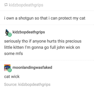 John Wick, Precious, and Cat: kidzbopdeathgrips  i own a shotgun so that i can protect my cat  kidzbopdeathgrips  seriously tho if anyone hurts this precious  little kitten I'm gonna go full john wick on  some mfs  moonlandingwasfaked  cat wick  Source: kidzbopdeathgrips Cat protection