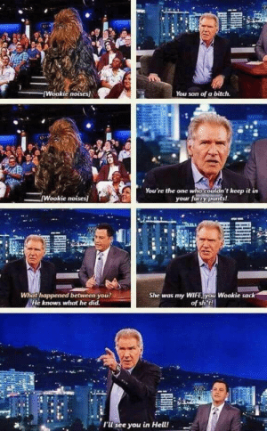 Bitch, Harrison Ford, and Ford: kie noLses  You son of a bitch  You're the one who couldn't keep it  Wookie noises)  your furry pants!  What happe  ned between you  She was my WIFE,you Wookie sack  of sh t!  He knows what he did  tli  'l see you in Hell! Harrison Ford ladies and gentlemen