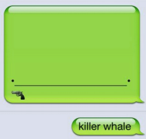 Whale Doesn't Take Nonsense From Anybodyhttp://meme-rage.tumblr.com: killer whale Whale Doesn't Take Nonsense From Anybodyhttp://meme-rage.tumblr.com
