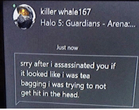 <p>Wholesome halo player</p>: killer whale167  Halo 5: Guardians Arena:..  Just now  srry after i assassinated you if  it looked like i was tea  bagging i was trying to not  get hit in the head. <p>Wholesome halo player</p>