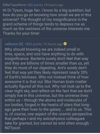 """Bodies , Neil deGrasse Tyson, and Brain: KillerTapeWorm 382 points 19 hours ago  Hi Dr Tyson, huge fan. I know its a big question, but  how do you go on knowing how small we are in this  universe? The thought of my insignificance in the  grand scheme of things tends to depress me as  much as the vastness of the universe interests me  Thanks for your time!  neiltyson [S] 1883 points 16 hours ago  Why should knowing we are indeed small in  time, space, and size have anything to do with  insignificance. Bacteria surely don't feel that way  and they are billions of times smaller than us, yet  they do most of our digesting. Ant's surely don't  feel that way yet they likely represent nearly 20%  of Earth's biomass. Why not instead think of hovw  awesome it is that our 3lbs Human brain matter  actually figured all this out. Why not look up to the  clear night sky, and reflect on the fact that we don't  simply live in this universe, but the universe lives  within us -through the atoms and molecules of  our bodies, forged in the hearts of stars that long  ago gave their lives to the galaxy...and to us. This  is, of course, one aspect of the cosmic perspective  that perhaps I and my astrophysics colleagues  take for granted, but cannot be told often enough  NDTyson <p>Dr. Neil deGrasse Tyson bringing the wholesomeness. via /r/wholesomememes <a href=""""http://ift.tt/2oQRnIU"""">http://ift.tt/2oQRnIU</a></p>"""