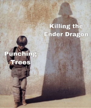 Then we chop off our son's hand: Killing the  Ender Dragon  Punching  Trees Then we chop off our son's hand