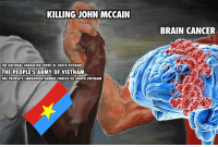 Brain: KILLINGJOHN MCCAIN  BRAIN CANCER  THE NATIONAL LIBERATION FRONT OF SOUTH VIETNAM  THE PEOPLE'S ARMY  OF VIETNAM  THE PEOPLE'S LIBERATION ARMED FORCES OF SOUTH VIETNAM