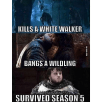Memes, Badass, and 🤖: KILLS A WHITE WALKER  BANGS A WILDLING  IGigaemofthrones  SURVIVED SEASON 5 Badass Sam 😎
