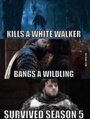 9gag, Slayer, and White: KILLS A WHITE WALKER  BANGS A WILDLING  SURVIVED SEASON 5  VIA 9GAG.COM Sam the Slayer