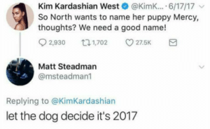 Kim Kardashian, Good, and Kardashian: Kim Kardashian West@Kimk... 6/17/17  So North wants to name her puppy Mercy,  thoughts? We need a good name!  2,930  27.5K  Matt Steadman  @msteadman  Replying to @KimKardashian  let the dog decide it's 2017 Unless the child is named genji and needs healing, dont waste your time ..