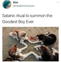 Good, Dank Memes, and Satan: Kim  @realkimhansen  Satanic ritual to summon the  Goodest Boy Ever @satan who's a good boy