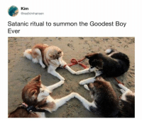 Dank, Boy, and 🤖: Kim  @realkimhansen  Satanic ritual to summon the Goodest Boy  Ever