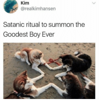 Funny, Boy, and Kim: Kim  @realkimhansen  Satanic ritual to summon the  Goodest Boy Ever 😂😂😂😂😂😂 https://t.co/vTBTiviDrp