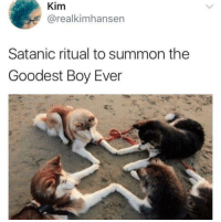 "Boy, Via, and Kim: Kim  @realkimhansen  Satanic ritual to summon the  Goodest Boy Ever <p>Goodest Boy Ever. via /r/wholesomememes <a href=""https://ift.tt/2Iupale"">https://ift.tt/2Iupale</a></p>"