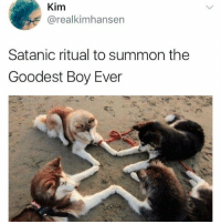 "Memes, Boy, and Via: Kim  @realkimhansen  Satanic ritual to summon the  Goodest Boy Ever <p>A summoning ritual via /r/memes <a href=""https://ift.tt/2GmVh4R"">https://ift.tt/2GmVh4R</a></p>"
