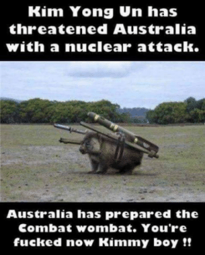 You seriously want to attack something where everything wants to attack you? Its alright were already dead.: Kim Yong Un has  threatened Australia  with a nuclearr attack.  Australia has prepared the  Combat wombat. You're  fucked now Kimmy boy!! You seriously want to attack something where everything wants to attack you? Its alright were already dead.