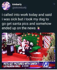 News, Work, and Pets: kimberly  @idkkimberly  i called into work today and said  i was sick but i took my dog to  go get santa pics and somehow  ended up on the news  PETS GET PICTURES WITH SANTA  LA PALMERA MALL E - When karma calls you out live on TV.