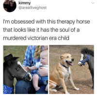 Memes, Horse, and Victorian Era: kimmy  @arealliveghost  I'm obsessed with this therapy horse  that looks like it has the soul of a  murdered victorian era child Why does this profoundly resonate with me @sigh