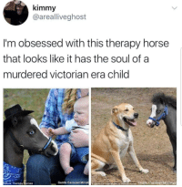 "<p><a href=""https://whitepeopletwitter.tumblr.com/post/176414047026/one-haunted-therapy-horse-please"" class=""tumblr_blog"">whitepeopletwitter</a>:</p><blockquote><p>One haunted therapy horse please</p></blockquote>: kimmy  @arealliveghost  I'm obsessed with this therapy horse  that looks like it has the soul of a  murdered victorian era child  iature Therapy Horses  Gentle Carousel MiniatCentie CarousetMtureTerdpy Horses Gentle Carousel Mimiatur <p><a href=""https://whitepeopletwitter.tumblr.com/post/176414047026/one-haunted-therapy-horse-please"" class=""tumblr_blog"">whitepeopletwitter</a>:</p><blockquote><p>One haunted therapy horse please</p></blockquote>"