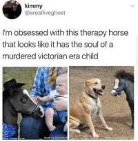 Victorian Era: kimmy  @arealliveghost  I'm obsessed with this therapy horse  that looks like it has the soul of a  murdered victorian era child  ure Therapy  Gentle Carousel Minat