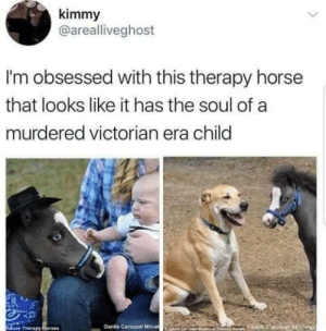 "Love, Tumblr, and Blog: kimmy  @arealliveghost  I'm obsessed with this therapy horse  that looks like it has the soul of a  murdered victorian era child  ure Therapy  Gentle Carousel Minat blackchibiusa:  wolfwhisper97:  I love how the dog is so delightfully cheerful while the horse is like ""Mrs haversham killed me""   Your comment just made me cry laughing"