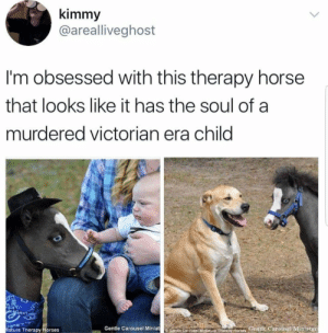 Dank, Horses, and Memes: kimmy  @arealliveghost  I'm obsessed with this therapy horse  that looks like it has the soul of a  murdered victorian era child  iature Therapy Horses  Gentle Carousel MiniatGentie CarousetMileture Therapy Horses Gentle Carousel Mimatur Meirl by thenintenkid FOLLOW HERE 4 MORE MEMES.