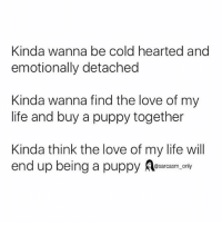 SarcasmOnly: Kinda wanna be cold hearted and  emotionally detached  Kinda wanna find the love of my  life and buy a puppy together  Kinda think the love of my life will  end up being a puppy Aesarcasm. only SarcasmOnly