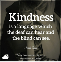 ➡ Get daily positive quotes in email ✉ www.diq.email ⬅: Kindness  is a language which  the deaf can hear and  the blind can see.  Mark  DAILY INSPIRATIONAL QUOTES  FACE UOTES ➡ Get daily positive quotes in email ✉ www.diq.email ⬅