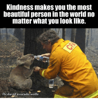 Moon Moon Wolf: Kindness makes Vou the most  beautiful person inthe World no  matter what you look like.  fb/david avocado wolfe