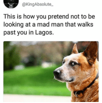While you mentally prepare yourself to teleport 😂😂😂😂 KraksTV TGIF: @KingAbsolute_  This is how you pretend not to be  looking at a mad man that walks  past you in Lagos. While you mentally prepare yourself to teleport 😂😂😂😂 KraksTV TGIF