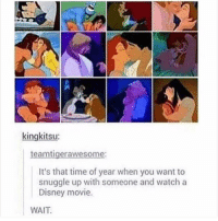 Disney, Memes, and Movie: kingkitsu:  teamtigerawesome:  It's that time of year when you want to  snuggle up with someone and watch a  Disney movie.  WAIT Don't follow @blazing if you're easily offended 🔞🤯