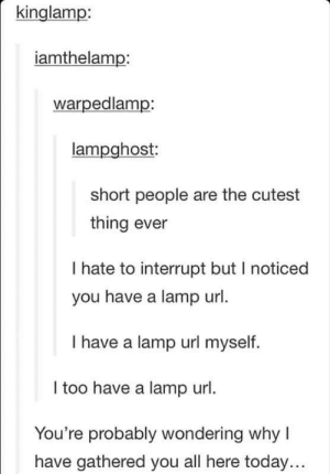 Today, Url, and Lamp: kinglamp:  iamthelamp:  warpedlamp:  lampghost  short people are the cutest  thing ever  I hate to interrupt but I noticed  you have a lamp url  I have a lamp url myself.  I too have a lamp url.  You're probably wondering why I  have gathered you all here today... The lamps