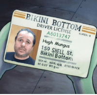 What's your name?: KINI DRIVER LICENSE  CLASS: S  Hugh Mungus  150 SHELL Bikini Bottom  SEX:M HAIR: N/A EYES: BLACK  0.07 WT:50z What's your name?