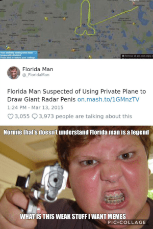 Florida Man, Funny, and Memes: Kis  Cty  e  Te  Ter  ww  tore  Your viaibiity  oly diabled  Press here o r  Remove al ads and enjoy e  Florida Man  @_FloridaMan  Florida Man Suspected of Using Private Plane to  Draw Giant Radar Penis on.mash.to/1GMnzTV  1:24 PM - Mar 13, 2015  3,055 3,973 people are talking about this  Normie that's doesn't understand Florida man is a legend  WHAT IS THIS WEAK STUFF I WANT MEMES  PIC COLLAGE Normie's REEE
