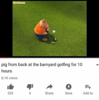 Anime, Black Lives Matter, and Funny: KissCartoon  pig from back at the barnyard golfing for 10  hours  8.1K views  =다  4  Share  Save  Add to This how I spend the day ★ Follow my personal and shitpost @peckphillip @spingus_fleeb _______________________________ - - - - meme furry dankmeme overwatch memes cringe vaporwave anime gay dankmemes lol trump weaboo filthyfrank bepis benis boi blacklivesmatter lol edgy wtf filthyfrank lmao haha funny 2017