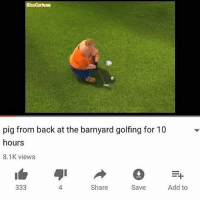 back at the barnyard: KissCartoorn  pig from back at the barnyard golfing for 10  hours  8.1K views  4  Share  Save  Add to