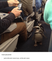 boys smiling: kissmytacoshell:  just smile and wave boys, smile and wave
