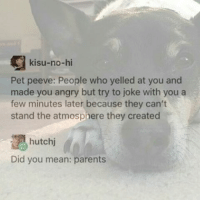 Memes, Parents, and Mean: kisu-no-hi  Pet peeve: People who yelled at you and  made you angry but try to joke with you a  few minutes later because they can't  stand the atmosphere they created  hutchi  Did you mean: parents MY MOTHER