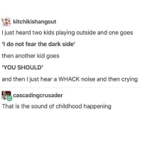 Crying, Memes, and Kids: kitchikishangout  I just heard two kids playing outside and one goes  'I do not fear the dark side'  then another kid goes  'YOU SHOULD  and then I just hear a WHACK noise and then crying  cascadingcrusader  That is the sound of childhood happening i snorted - 🌙