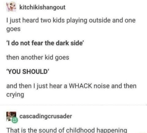 Crying, Game, and Kids: kitchikishangout  I just heard two kids playing outside and one  goes  I do not fear the dark side'  then another kid goes  YOU SHOULD  and then I just hear a WHACK noise and then  crying  cascadingcrusader  That is the sound of childhood happening Everyone with a sibling knows this game