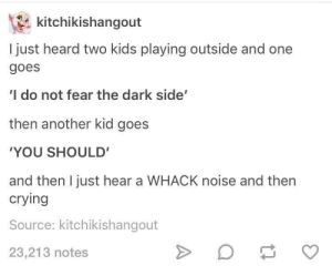 "Crying, Kids, and Fear: kitchikishangout  I just heard two kids playing outside and one  goes  'I do not fear the dark side""  then another kid goes  YOU SHOULD'  and then I just hear a WHACK noise and then  crying  Source: kitchikishangout  23,213 notes You will die braver than most"