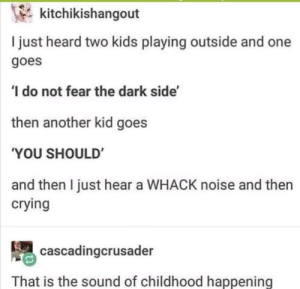 srsfunny:  The dark side: kitchikishangout  I just heard two kids playing outside and one  goes  do not fear the dark side'  then another kid goes  'YOU SHOULD  and then I just hear a WHACK noise and then  crying  cascadingcrusader  That is the sound of childhood happening srsfunny:  The dark side