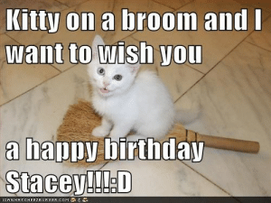 Birthday, Happy Birthday, and Happy: Kitty on a broom and  want to wish yoU  npv birthda  a ha Kitty on a broom and I want to wish you a happy birthday Stacey!!!:D ...