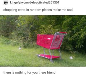 Shopping, Lost, and Sad: kjhgefyjwdnwd-deactivated201301  shopping carts in random places make me sad  there is nothing for you there friend poor lost boy