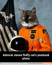KLAXON  Admiral James fluffy cat's yearbook  photo  Reinvented by Crazy Anime-Gamer for iF