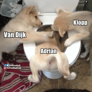 Van Dijk and Klopp in the locker room after Adrian cost them the clean-sheet. https://t.co/di4AfGeVpV: Klopp  Van Dijk  Adrian  f  O TheFootballTroll  TrollFootball Van Dijk and Klopp in the locker room after Adrian cost them the clean-sheet. https://t.co/di4AfGeVpV