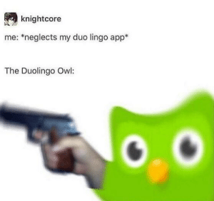 App, Owl, and Cinnamon: knightcore  me: *neglects my duo lingo app*  The Duolingo Owl: Looks like a cinnamon roll, could actually kill you: