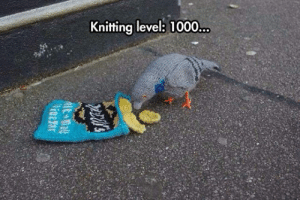 Taken, Tumblr, and Blog: Knitting levelb: 1000. srsfunny:Knitting Skills Taken To Another Level
