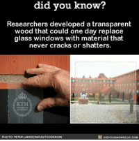 Apple, Crazy, and Memes: know?  did you know?  Researchers developed a transparent  wood that could one day replace  glass windows with material that  never cracks or shatters.  DIDYOUKNowBLOG.coM  PHOTO: PETER LARSSONIFASTCODESIGN What?! Crazy... 🤔 wood window glass house ➡📱Download our free App: http:-apple.co-2i9iX0u