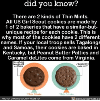 Baked, Cookies, and Life: know?  did you know?  There are 2 kinds of Thin Mints.  All US Girl Scout cookies are made by  1 of 2 bakeries that have a similar-but-  unique recipe for each cookie. This is  why most of the cookies have 2 different  names. If your local troop sells Tagalongs  and Samoas, their cookies are baked in  Kentucky, but Peanut Butter Patties and  Caramel deLites come from Virginia.  SMOOTHER.  CRUNCHIER.  CHOCOLATE  COATING  MORE Thin Mints  lhin Mints  PHOTO: ORANGE COUNTY REGISTER  DIDYOUKNOWFACTS, co But we can all agree Girl Scout cookies are life. 🍪 girlscout cookies interesting weird ➡📱Download our free App: [LINK IN BIO]
