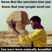Africa, Memes, and Preach: Know that the ancestors love you  Know that your people need you  @chakabars  You were born naturally beautiful My daughter will be African, her mother is going to teach her to love her natural beauty, from the moment she is born. I will teach her the same, not just by what I tell her, but what I show her. Her mother will be African & practice natural beauty as a way of life just by being true to her ancestors & her beautiful African culture. We will raise her eating organic, natural electrical alkaline soul food. There will be no superficiality, she will be home schooled or schooled in a pan African school run by Africans & taught an Afrocentric curriculum. I went to European school, run by Europeans, that had a European curriculum. It was miseducation. It's fine for Europeans but not for Africans. We will make sure she knows Herstory not just the story of men. We will inform her about all religions & show her the reality of man & how regardless of his preaching, his actions negate his fantasies. We will teach her about MA'AT, food combining, circadian rhythms of the body, police brutality, transatlantic & trans Saharan slavery, colonialism, Kemet, Kush, the dogon, the himba, the Gerzeans, Badarians & Nagadans, because many of the Neolithic African cultures were matriarchal, she will learn this when I teach her about the people at Merimde & how the Africans called the Natufians were the first peoples in Palestine 10,000 years ago. I will teach her how using radiocarbon dating, the Archaeologists Alison brooks & John Yellen have uncovered artefacts that highlight advanced Katandan & Ishango cultures in east central Africa, that date back as old as 70,000 years ago. This level of advancement was not achieved out of Africa until at least 54,000 years later. I will teach her about the Queens, the farmers the freedom fighters and the mothers of civilisation. How it was an African woman Fatima Cécile Fatiman, who was the spiritual leader of the Haitian revolution, she organised the Voodoo ceremony at Bois Caïman which was the starting point for the only revolution in human history, where the enslaved population have overthrown the oppressive goverment & become the goverment. I will teach her that she matters & is a Goddess & original creator of life. chakabars