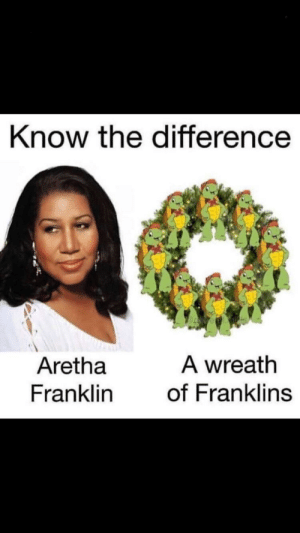 Know the Difference a Wreath Aretha Franklin of Franklins