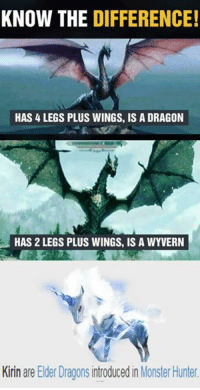 Notice the difference!: KNOW THE DIFFERENCE!  HAS LEGS PLUS WINGS, IS A DRAGON  HAS 2 LEGS PLUS WINGS, IS A WYVERN  Kirin are Eder Dragons introducedin Monster Hunter. Notice the difference!